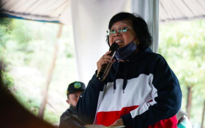 Rehabilitasi Hutan dan Lahan yang Dilakukan KLHK Serap Jutaan Tenaga Kerja - JPNN.com