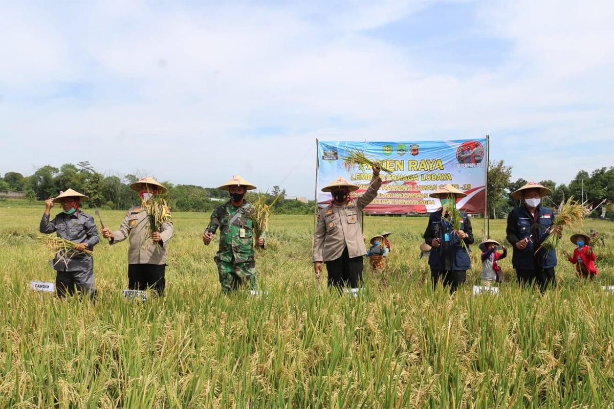 Idham Azis dan Hadi Tjahjanto Pimpin Panen Raya Desa Tangguh Majalengka - JPNN.com