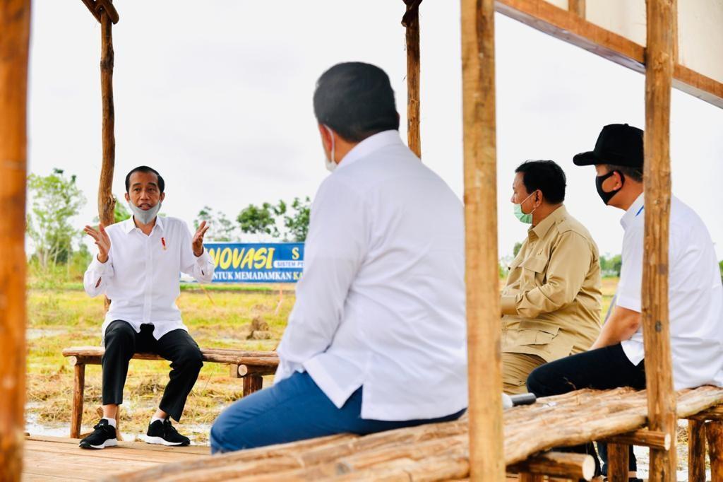 Jokowi Tinjau Lokasi Pengembangan Lumbung Pangan Nasional di Kapuas - JPNN.com