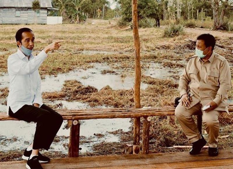 Pakar: Prabowo Dapat Tugas yang Tidak Masuk Akal dari Jokowi - JPNN.com