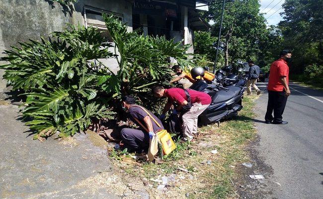Pembunuh Janda Putu Sekar Belum Juga Tertangkap - JPNN.com