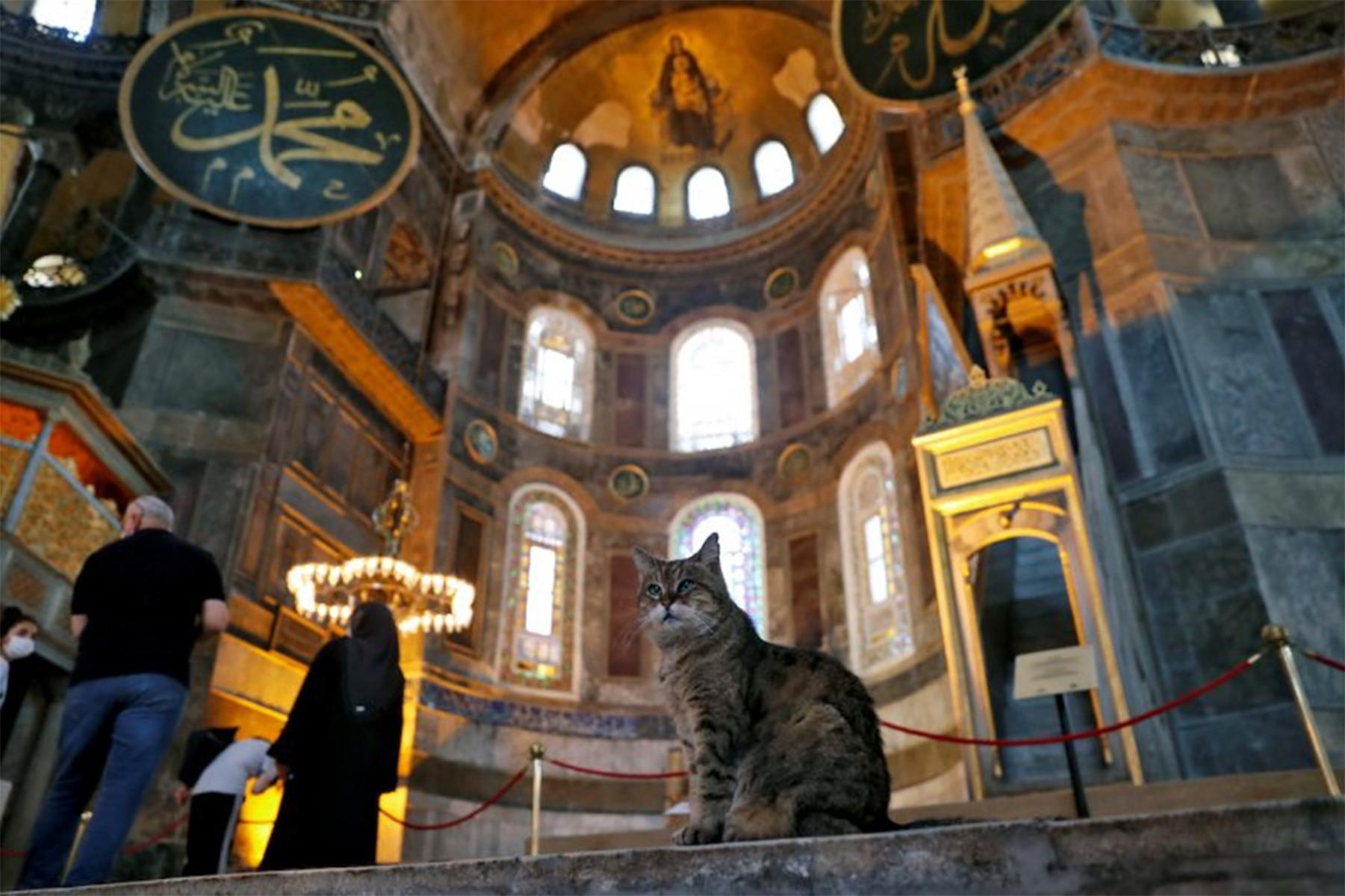 Masih Bolehkah Gli Tinggal di Hagia Sophia? - JPNN.com