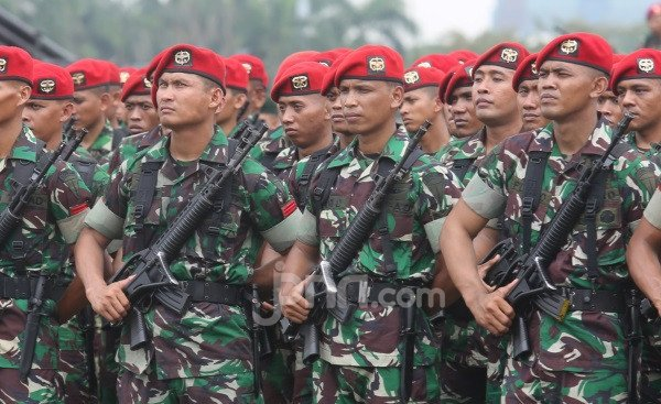 Menurut Bang Ray, Tak Elok Ada Pasukan TNI di Bawah Komando Polisi - JPNN.com