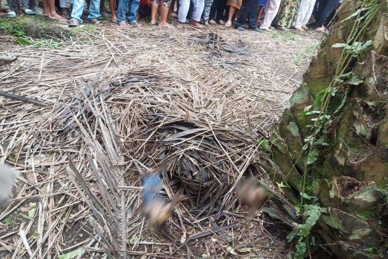 Mayat Tertutup Pelepah Sawit Itu Ternyata Mbak Rani Angreni, Kondisinya Mengenaskan - JPNN.com