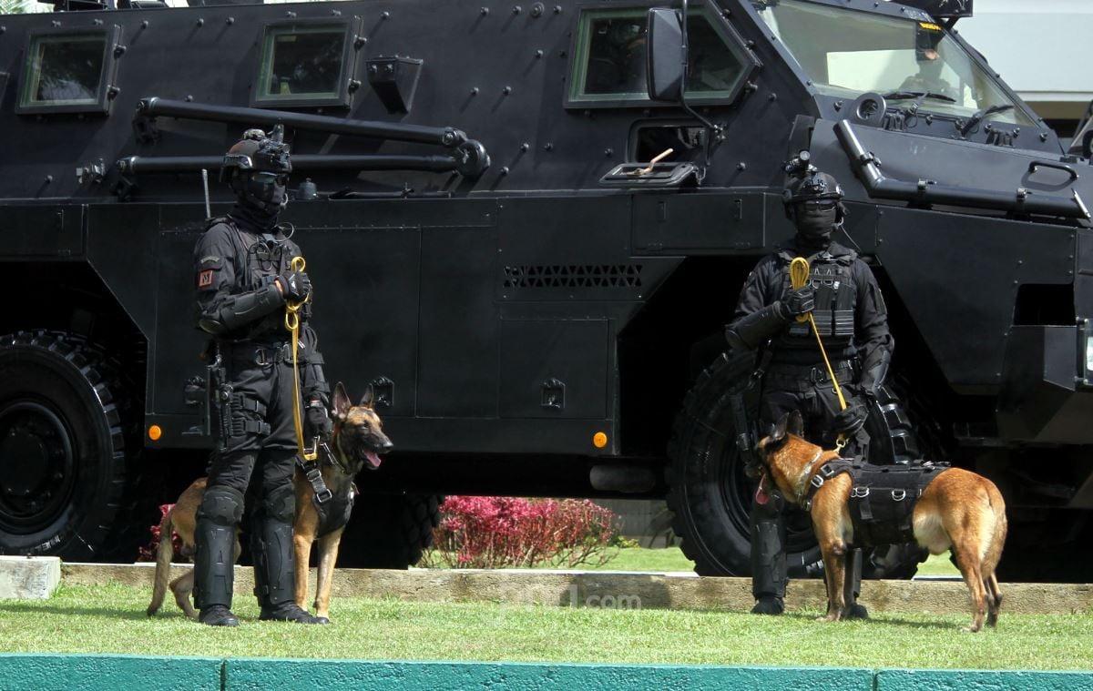 Ulin Lolos dari Pembantaian Satu Keluarga, 100 Pasukan Dikerahkan Memburu Ali Kalora - JPNN.com