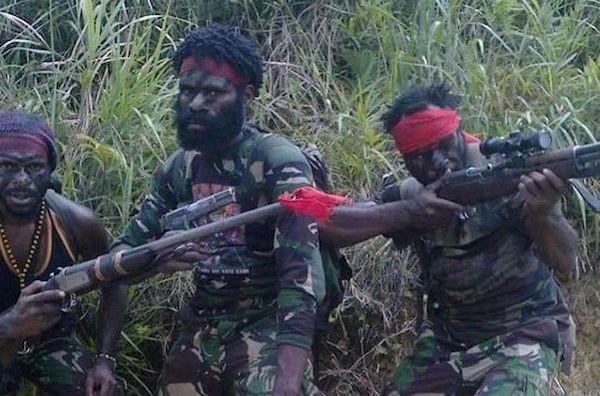 Pratu Roy Ditembak KKB dari Jarak 200 Meter, Pratu Dedi Bereaksi, Diberondong dari Hutan - JPNN.com