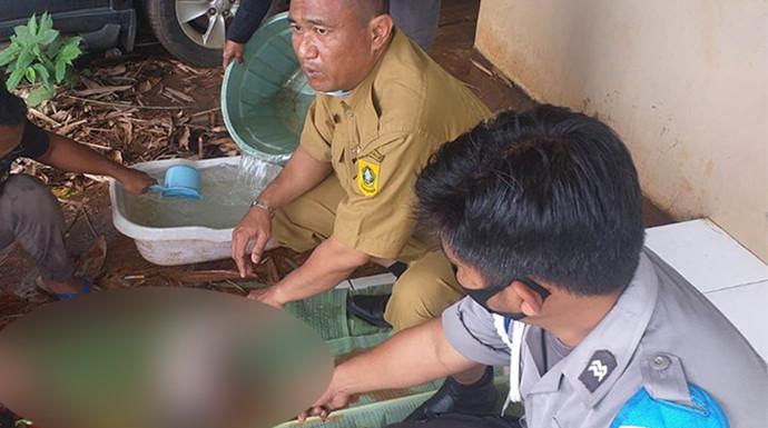 Tas Berwarna Hijau Tergeletak di Semak-semak, Gempar - JPNN.com