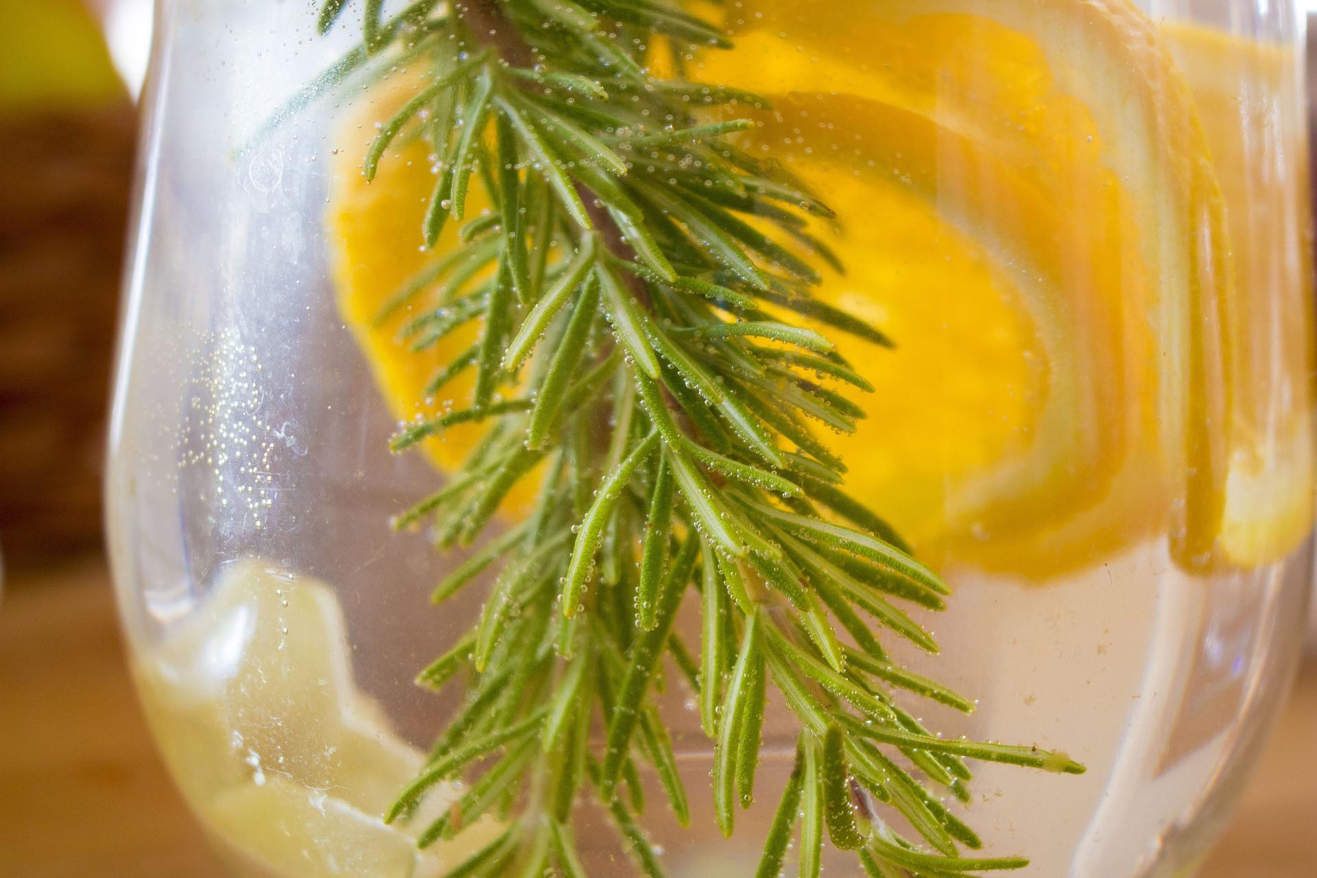 7 Khasiat Minum Air Lemon Hangat Sebelum Tidur Jpnn Com