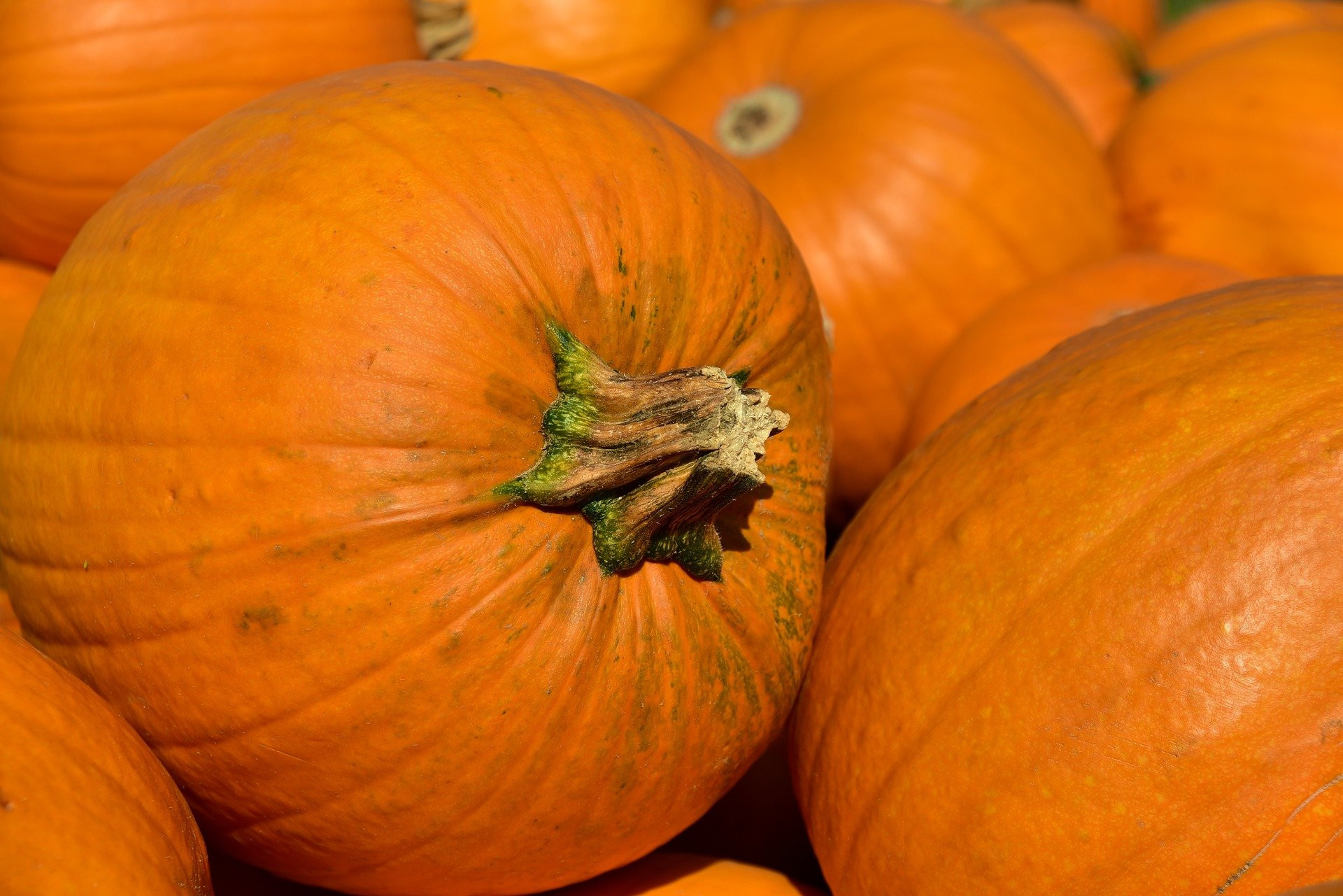 Good for eyesight, here are 6 benefits of pumpkin you need to know - JPNN.com