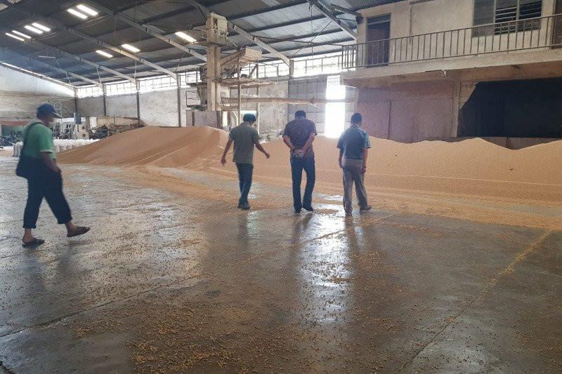 Bareskrim Polri Ungkap Penyebab Kelangkaan Kacang Kedelai Impor di Pasaran - JPNN.com