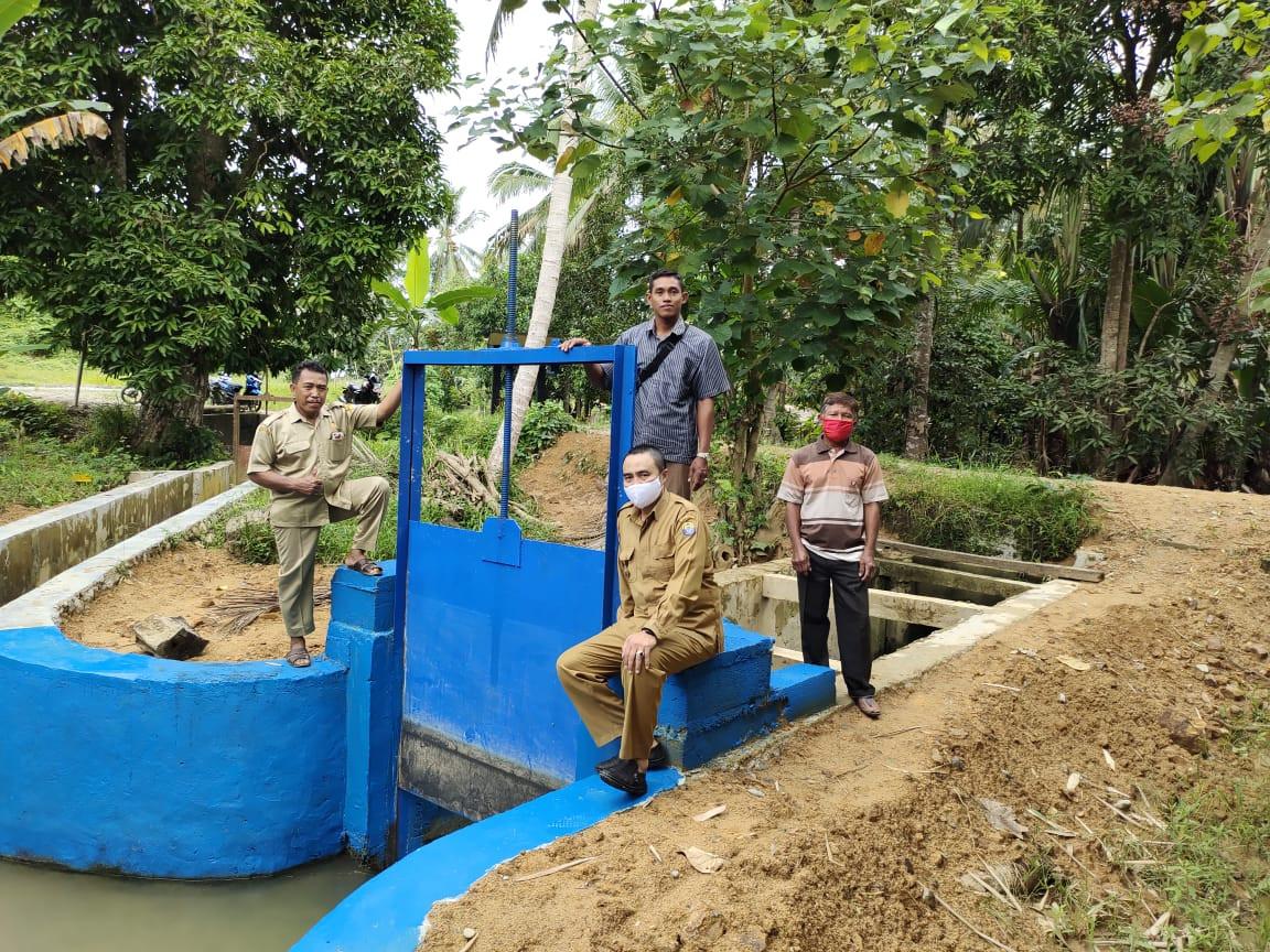 Dam Parit Bantu Tingkatkan Produksi Padi di Tolitoli - JPNN.com
