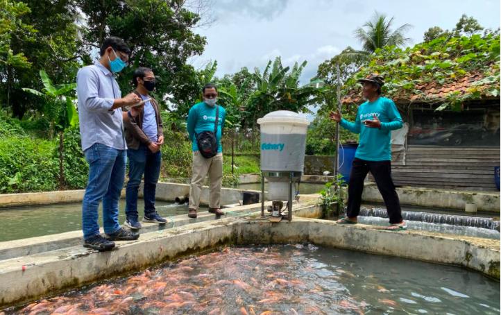 Pembudi Daya Ikan Terus Tumbuh Lewat eFishery - JPNN.com