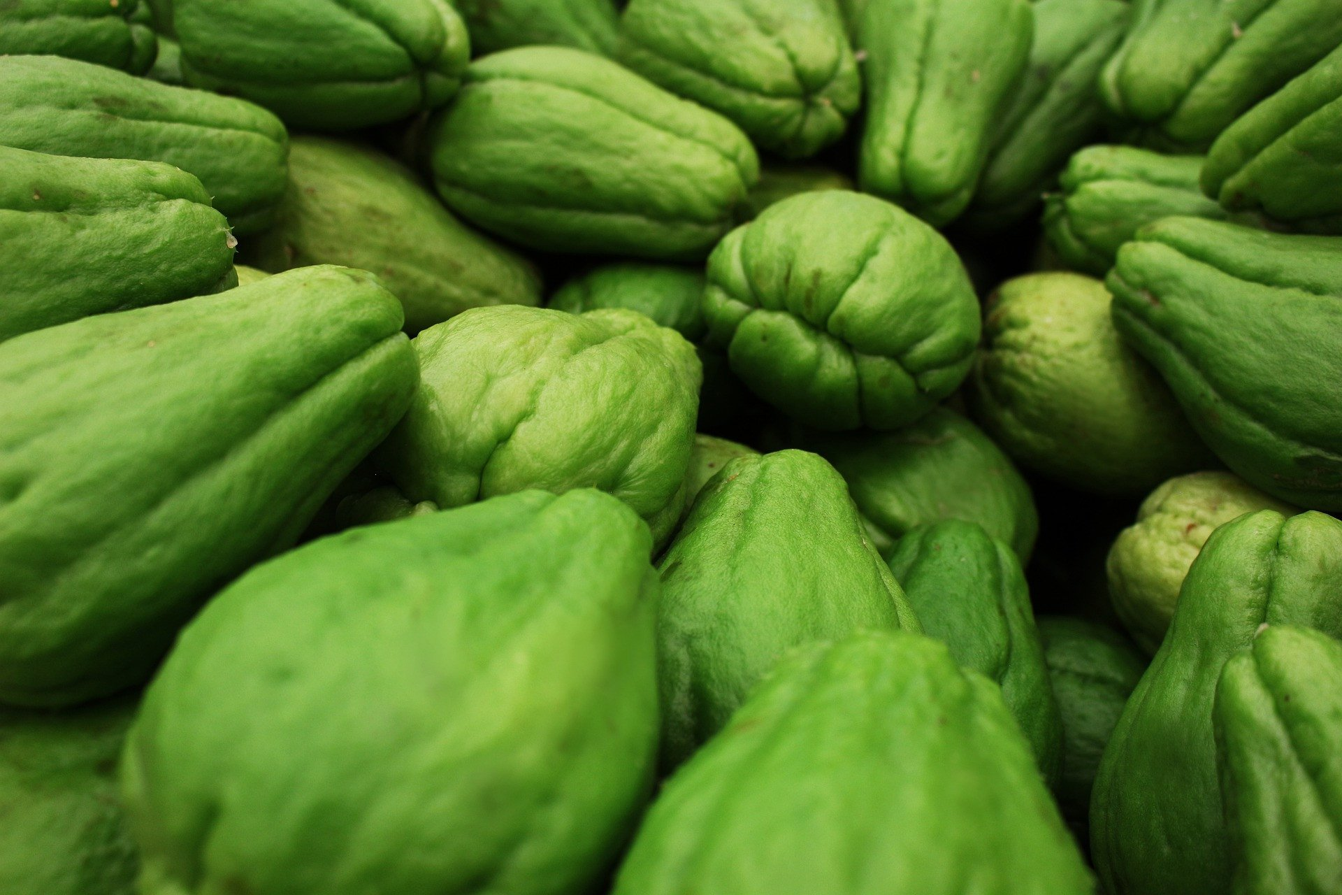 Effective Overcome Uric Acid, These are 6 Benefits of Chayote for the Body - JPNN.com