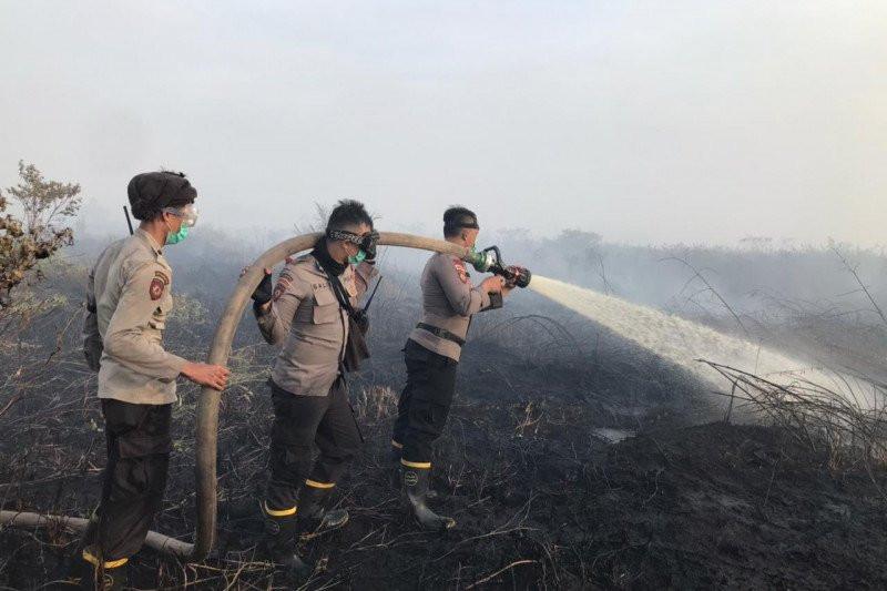 Polri Prioritaskan Enam Polda dalam Penanganan Kasus Karhutla - JPNN.com