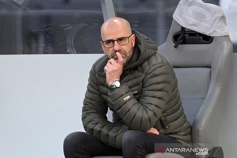 Leverkusen Pecat Peter Bosz Menyusul Hasil Buruk - JPNN.com