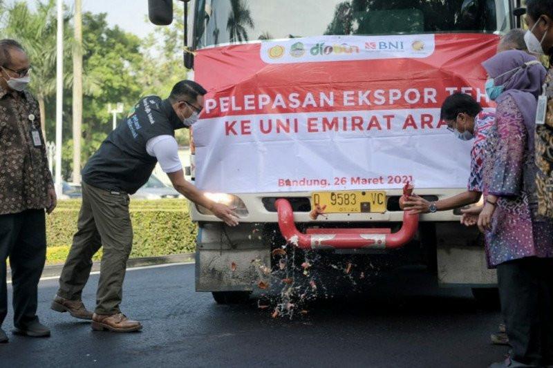 Ridwan Kamil Melepas Ekspor 20 Ton Teh ke UEA - JPNN.com
