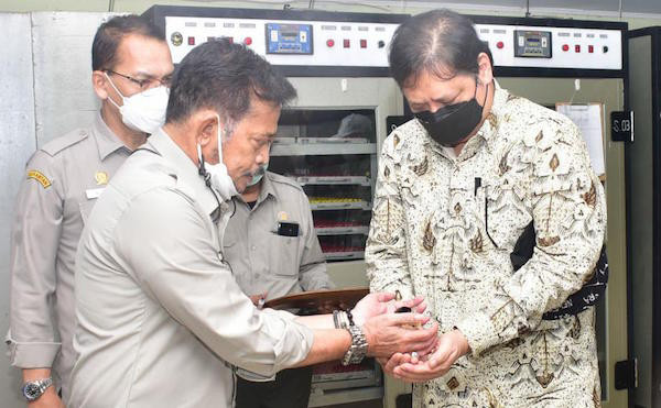 Mentan Bersama Menko Perekonomian Salurkan 20 Ribu DOC Ayam Petelur ke RTM - JPNN.com