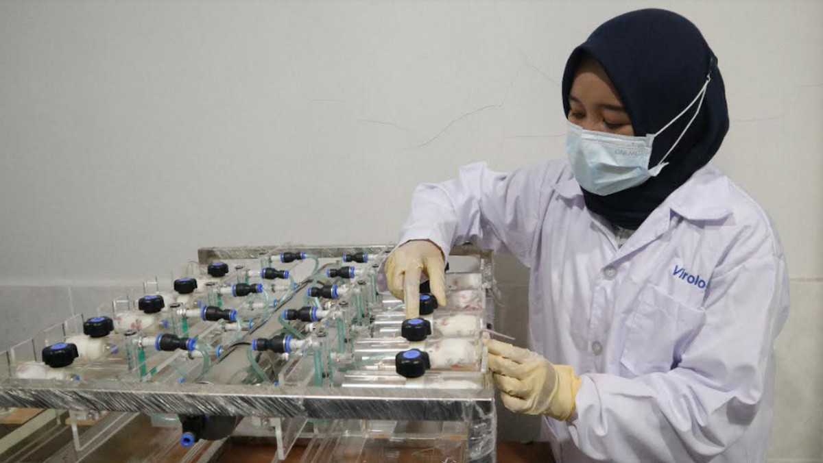 IDI Pusat Apresiasi Penilitan Produk Eucalyptus Kementan - JPNN.com