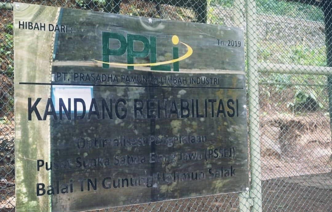 Hari Keragaman Hayati, Perusahaan Limbah Urus Konservasi Elang Jawa - JPNN.com