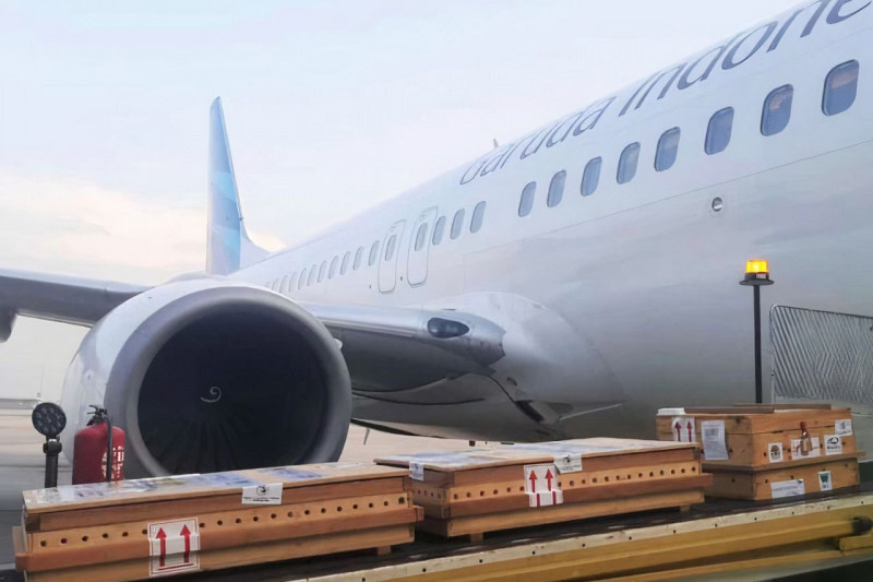 Begini Cara Garuda Fasilitasi Pemulangan 13 Kura-Kura Rote dari Singapura ke Kupang, Salut - JPNN.com Bali