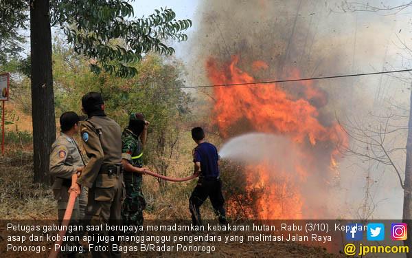 Kebakaran Lahan Ganggu Wilayah Ponorogo - JPNN.COM