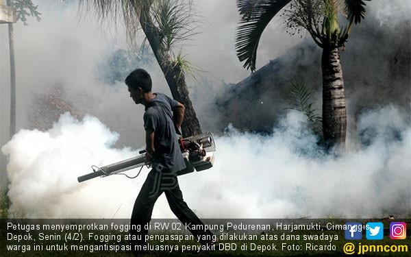 Cegah DBD Meluas, Fogging Digalakkan - JPNN.COM