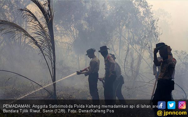 Area Bandara Tjilik Riwut Terbakar - JPNN.COM