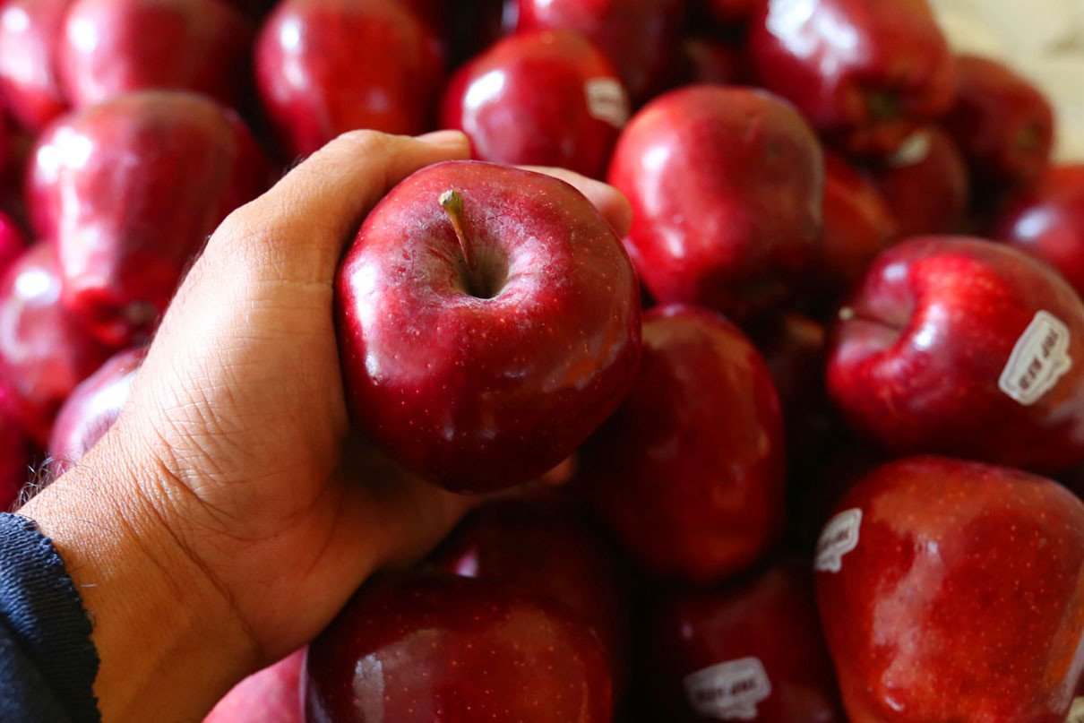 Sederet Manfaat Buah Apel Jika Rutin Dikonsumsi, Jangan Dilewatkan! - JPNN.com
