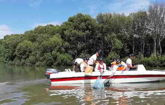 Menteri Siti Kelilingi Mangrove Angke, Jaring Sampah Plastik