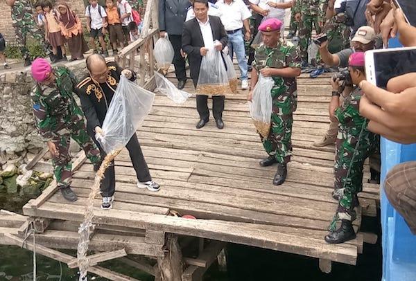Horas! Marinir Peduli Danau Toba Tebar Bibit Ikan Emas di Tigaras