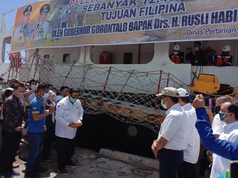 Gorontalo Lepas Ekspor Jagung Sebanyak 12.400 Ton Ke Filipina