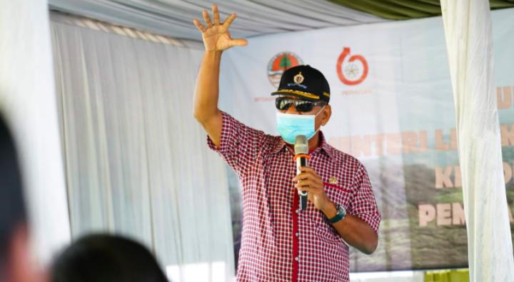 Rehabilitasi Hutan dan Lahan yang Dilakukan KLHK Serap Jutaan Tenaga Kerja