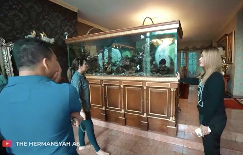 Ashanty Melongo Lihat Akuarium di Rumah Inul, Harganya Fantastis