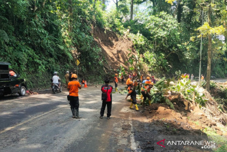 Terjadi Longsor dan Pohon Tumbang di Jalur Gumitir Jember, Satu Mobil Tertimpa - JPNN.com Jatim