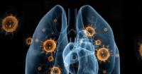 Oh My God... Hasil Studi Terbaru Virus Corona Mencengangkan - GenPI.co