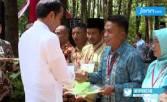 Jokowi: Ini Jangan Dipikir Kecil - JPNN.COM