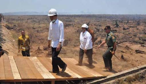 Jokowi: Jangan-Jangan Hanya Seremonial - JPNN.COM