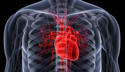 3 Tips Mudah Cegah Serangan Jantung - JPNN.COM