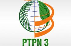 Hamdalah, Kinerja PTPN III Semakin Membaik - JPNN.com