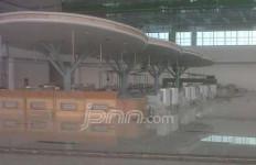 Ada 16 Jamur Raksasa di Bandara Sepinggan - JPNN.com
