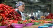 Harga Cabai Rawit di Atas Daging Sapi, Pedagang Rugi - JPNN.COM