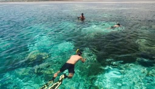 Kemenpar Gelar FGD Penyusunan Target Pasar Wisata Bahari di Wakatobi - JPNN.COM