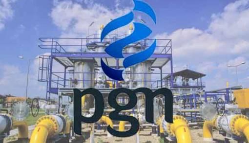 PGN Siap Bangun Kilang LNG