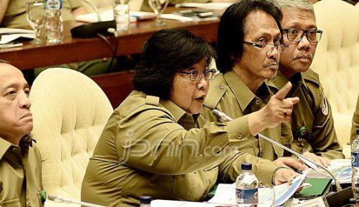 Garap Lahan Gambut, PT SPM Disanksi KLHK - JPNN.COM