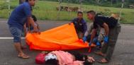 Ibu dan Anaknya Digilas Truk setelah Tabrak Kawanan Lembu - JPNN.COM