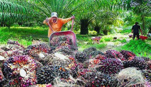 Riau jadi Target Eksplorasi Cadangan Energi Baru - JPNN.COM