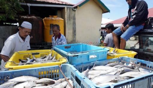 Penuhi Pabrik Pengolahan, Jatim Impor Ikan - JPNN.COM