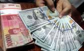 Penipu Modus Investasi Tukar Dolar Ditangkap - JPNN.COM