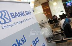 Adhyaksa Dault Kehilangan Posisi Komisaris BRI - JPNN.com