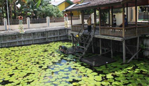 Inilah Kolam Pemandian Putri Tujuh, Airnya Dipercaya Bikin Awet Muda - JPNN.COM